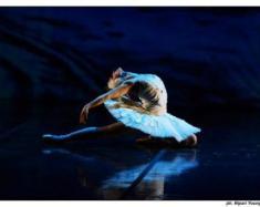 """L'incanto de """"Il cigno nero"""" al Teatro Petruzzelli"""